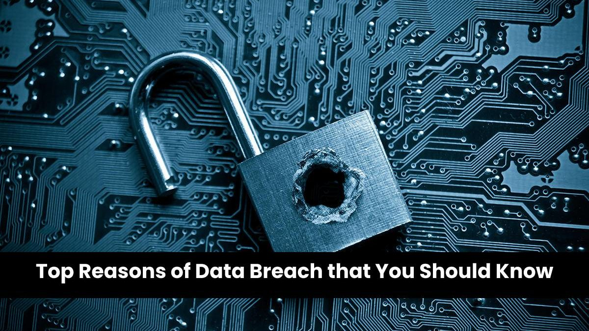 Top Reasons of Data Breach that You Should Know